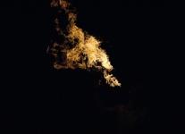 Lichnice ohňovka